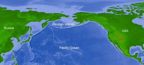 Aleutian Islands corals